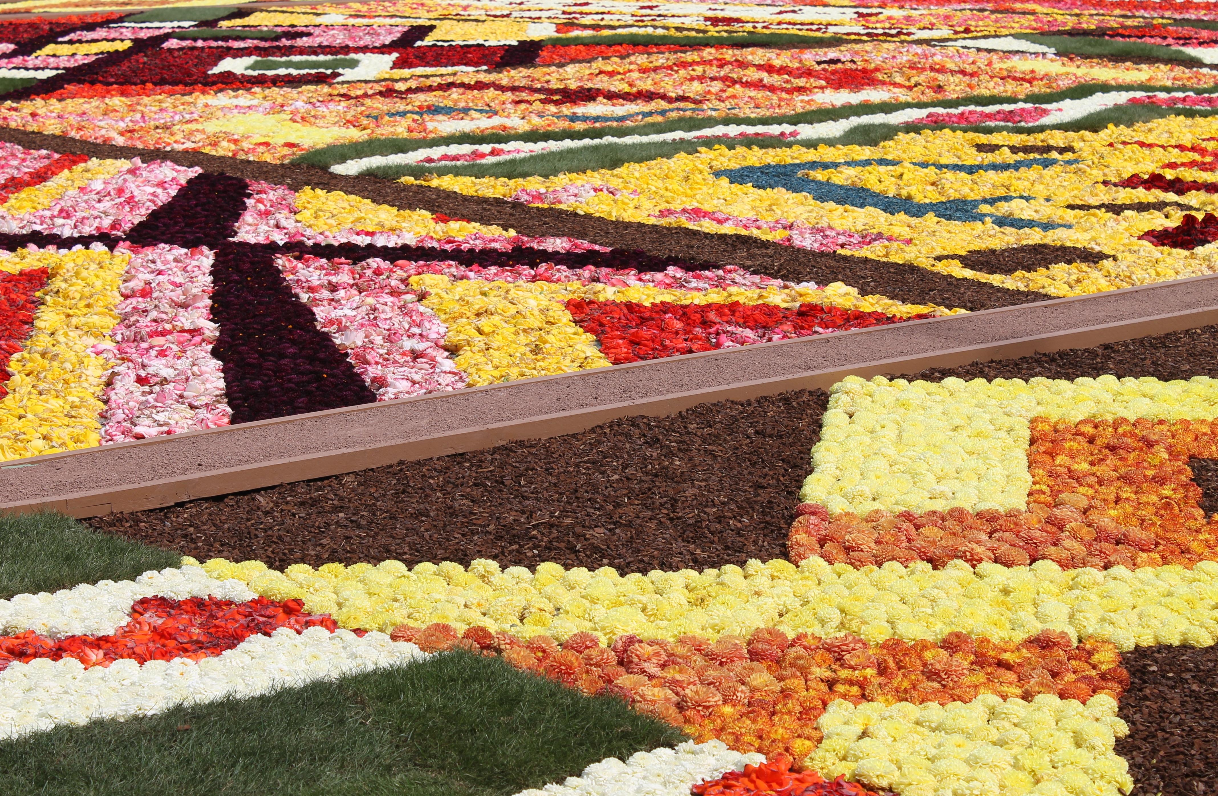 A Carpet Of Flowers Jessinbelgium
